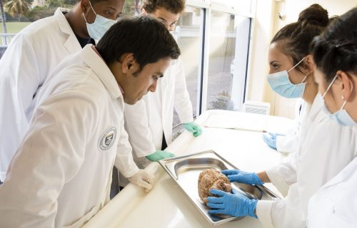 caribbean med school students and professors
