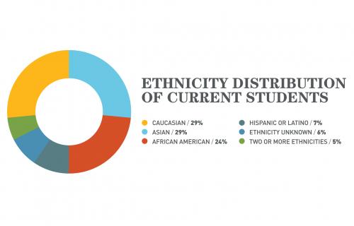 SJSM - Ethnicity distribution of current students