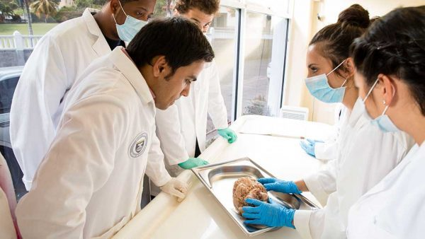 students at a top caribbean medical school
